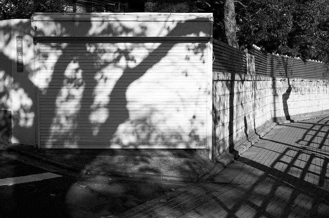 Shinjuku Mad - Sunshine trilogy: Sun sets early here 03