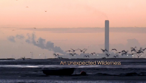 Dzikie zak�tki Anglii / An Unexpected Wilderness (2009) PL.1080i.HDTV.x264 / Lektor PL