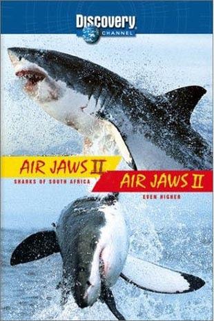 Szczêki w powietrzu 2 / Air Jaws 2 (2002) PL.TVRip.XviD / Lektor PL