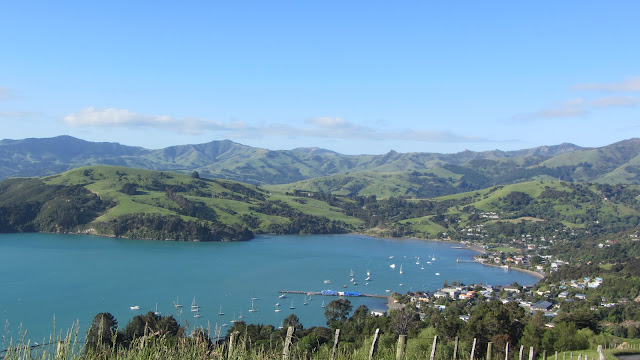 Looking back on Akaroa town on the steep drive out to Pohatu penguin colony.