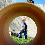 The children just love exploring the natural play area!