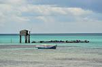 Fermy krewetek niedaleko Palau Kepayang.