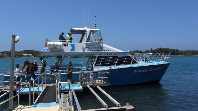 The Coolangatta Whale Watch boat.