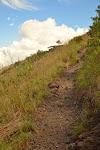 ścieżka na szczyt