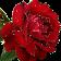 اسيل م. avatar