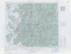 Thumbnail U. S. Army map nn40-8