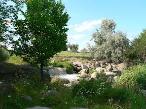 green farm 3 на nokia 5228