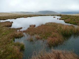 Pond on Lank Rigg