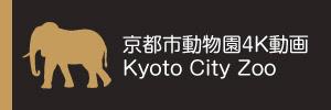 京都市動物園4K動画 Kyoto City Zoo