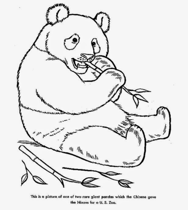 Free animal coloring pages! Color, Cut and Create - zoo animals coloring pages free