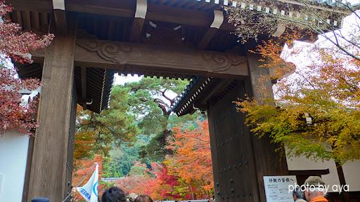 永観堂 入口