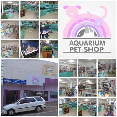 Aquarium e PetShop, R. Mal. Borman, 183-d - Centro, Chapecó - SC, 89801-050, Brasil, Loja_de_animais, estado Santa Catarina
