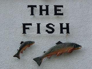 The Fish sign - Buttermere (but what fish are they?)