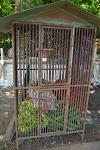 dobrze strzeżone jedzenie dla małp grasujących w okolicach świątyni. pracownicy starają się je tak wytresować, aby przestały okradać turystów