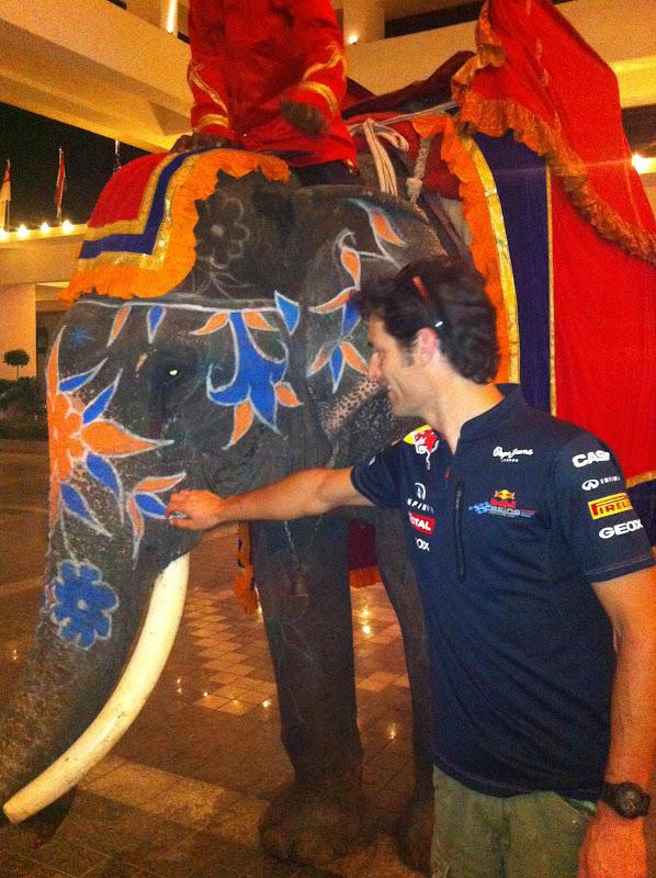 Марк Уэббер со слоном в дни уикэнда на Гран-при Индии 2011