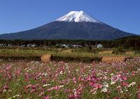 El monte Fuji en primavera