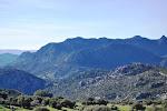 Rural Cadiz landscape