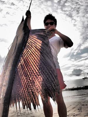 Камуи Кобаяши и рыба-меч с него ростом