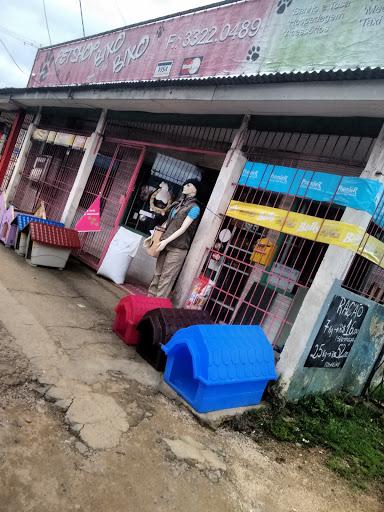 Pet Shop Bixo Bixo, Estr. João de Oliveira Remião, 4504 - Lomba do Pinheiro, Porto Alegre - RS, 91560-000, Brasil, Loja_de_animais, estado Rio Grande do Sul