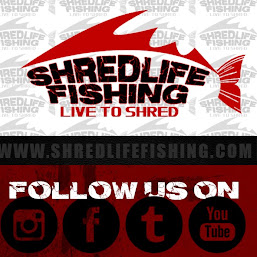 SHREDLIFE FISHING photos, images
