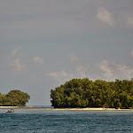 roślinność na wyspach była dla mnie wielkim zaskoczeniem. spodziewałam się rajskich palm i egzotycznych plaż, a wyspy były porośnięte... klasyczną dżunglą