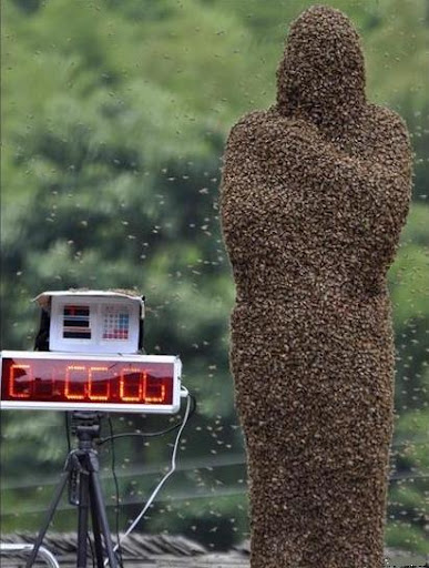 bee-wearing contest in china