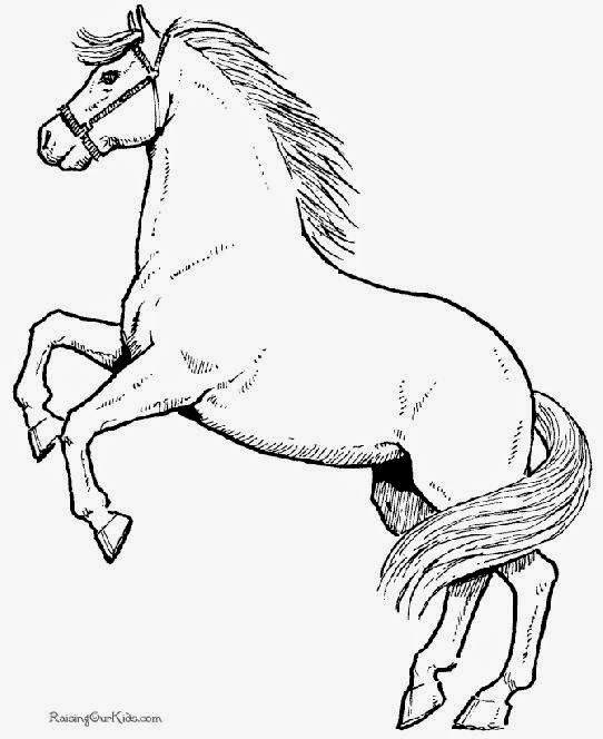 Free Horse Coloring Book Pages Pleasure Gait Farms