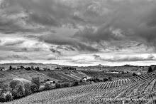 21 aprile 2014 Castiglione Tinella - fotografia di Vittorio Ubertone