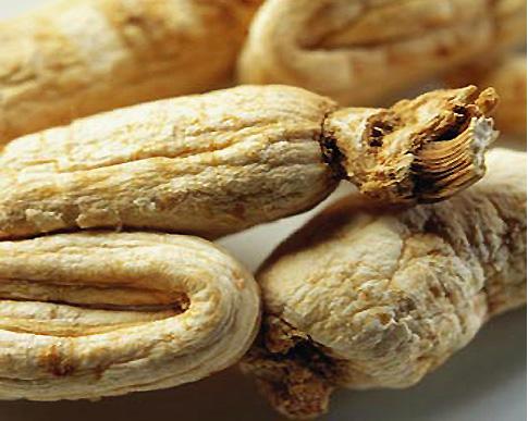 Ginseng%2520Siberia Kandungan Phytochi