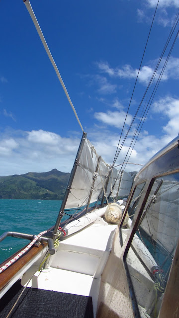 Sailing the Akaroa Bay on the Manutara classic yacht with A-Class Sailing.