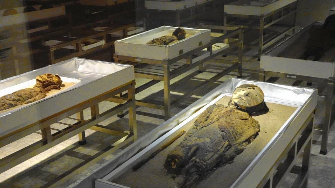 Chile's quest to save melting mummies