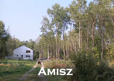 Amisz (2006) PL.TVRip.XviD / PL