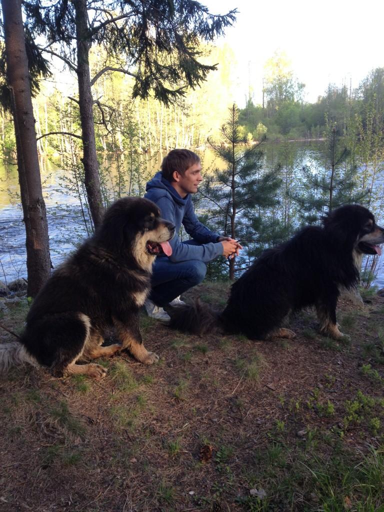 Виталий Петров со своими собаками в лесу