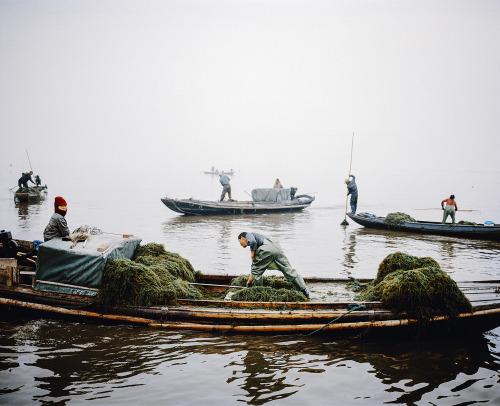 boatlife.jpg