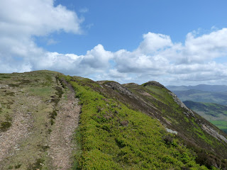 Causey Pike undulating Summit ridge.