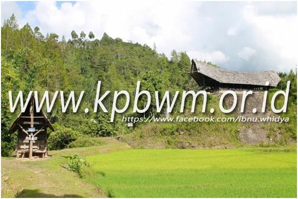 tongkonan kecil makam tedong tedong mamasa