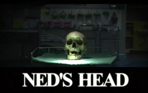 Dajcie mi g³owê Neda Kelly / Ned's Head (2011) PL.TVRip.XviD / Lektor PL