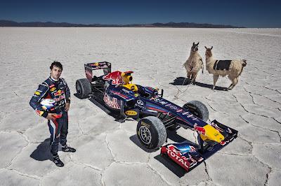 Даниэль Риккардо и Red Bull на соленом озере с ламами - ноябрь 2012