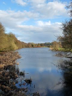 Calwich Abbey Lake from Portobello Bridge