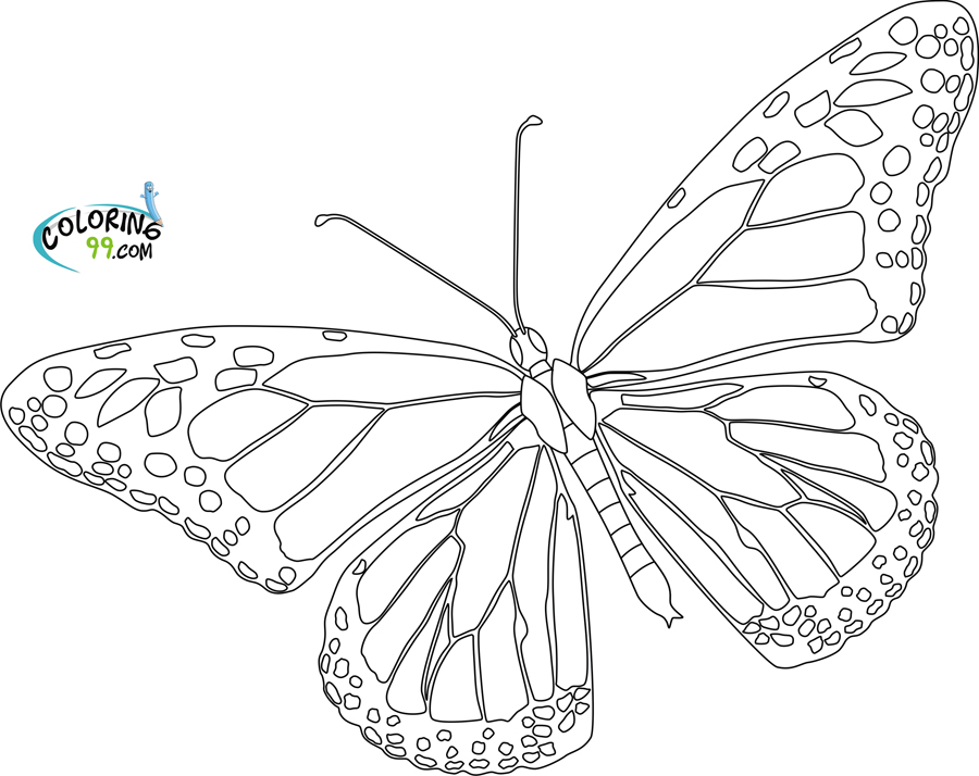 monarch butterfly coloring pages - Monarch Butterfly coloring page Animals Town animals