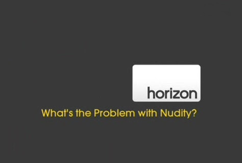 Horyzonty K³opot z nago¶ci± / What's The Problem With Nudity? (2009) PL.TVRip.XviD / Lektor PL