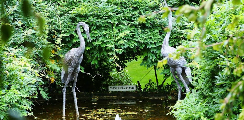 external image milton-park-wisteria-pond.jpg