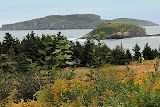 Rugged Coastline -- Newfoundland, Canada