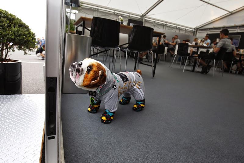 игрушечный Роско на Гран-при Японии 2014