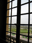 Looking outside to the gardens