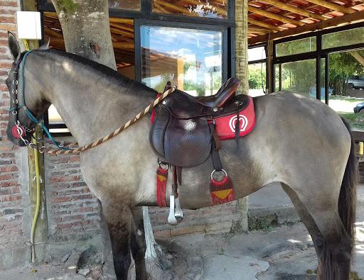CIA do Cavalo, Alameda Aliança, 2 - Estância do Sereno Ptb, Betim - MG, 32659-030, Brasil, Discoteca, estado Minas Gerais