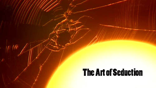 Sztuka uwodzenia / The Art of Seduction (2009) TVRip.XviD / PLSUB