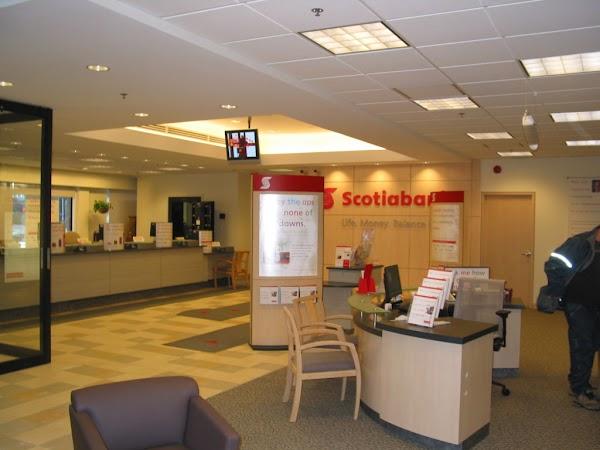 Scotiabank canada head office address pdf