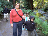 Beth and Kids By Stream, Muir Woods, California