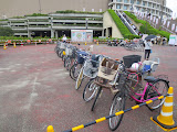 Bicycle parking at the Yahoo Dome - neat rows! no locks!